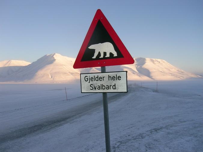 Imagen cortesía de Jan Økland